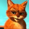 Аватар пользователя fcdm25