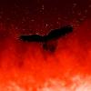 Аватар пользователя SolStar