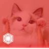 Аватар пользователя Mascots