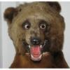 Аватар пользователя TemkaGolikov