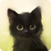 Аватар пользователя Kawaiiii