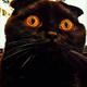 Аватар пользователя sapogrus
