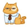Аватар пользователя rayen