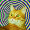 Аватар пользователя Caddysmellstrees