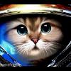 Аватар пользователя JmenkaSemak