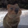 Аватар пользователя AStFortis