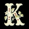 Аватар пользователя korlit