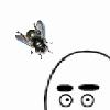 Аватар пользователя GofryJires