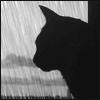 Аватар пользователя JIyrapy