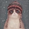 Аватар пользователя drimkat4er