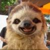 Аватар пользователя hostberg