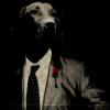 Аватар пользователя Dogfather
