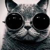 Аватар пользователя MoristKa