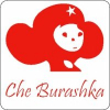 Аватар пользователя burashkache