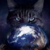 Аватар пользователя Tornik73