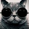 Аватар пользователя kristinakenga