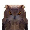 Аватар пользователя ssstarkkk