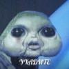 Аватар пользователя DesertRebe1