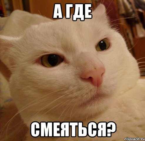 https://cs6.pikabu.ru/images/big_size_comm/2014-03_1/13940034269956.jpg
