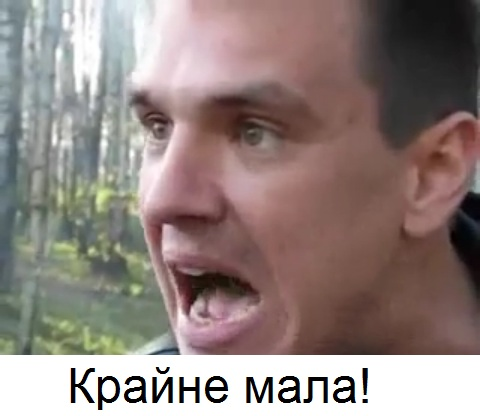 https://cs6.pikabu.ru/images/big_size_comm/2014-08_6/14091329035186.jpeg