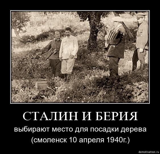 Image result for сталин сажает березу