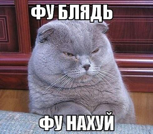 masturbatsiya-kak-poluchit-polniy-kayf-porno-s-nakachennoy-chernoy-telkoy