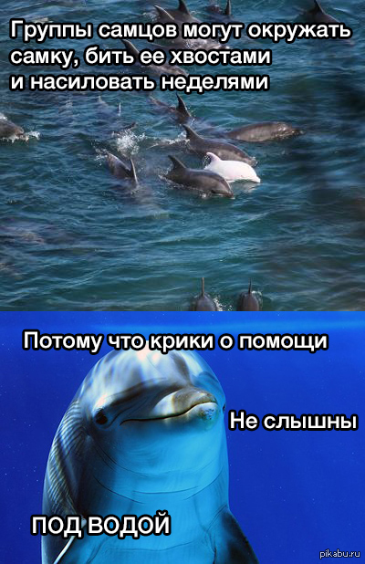 Порно секс с рыбой дельфин