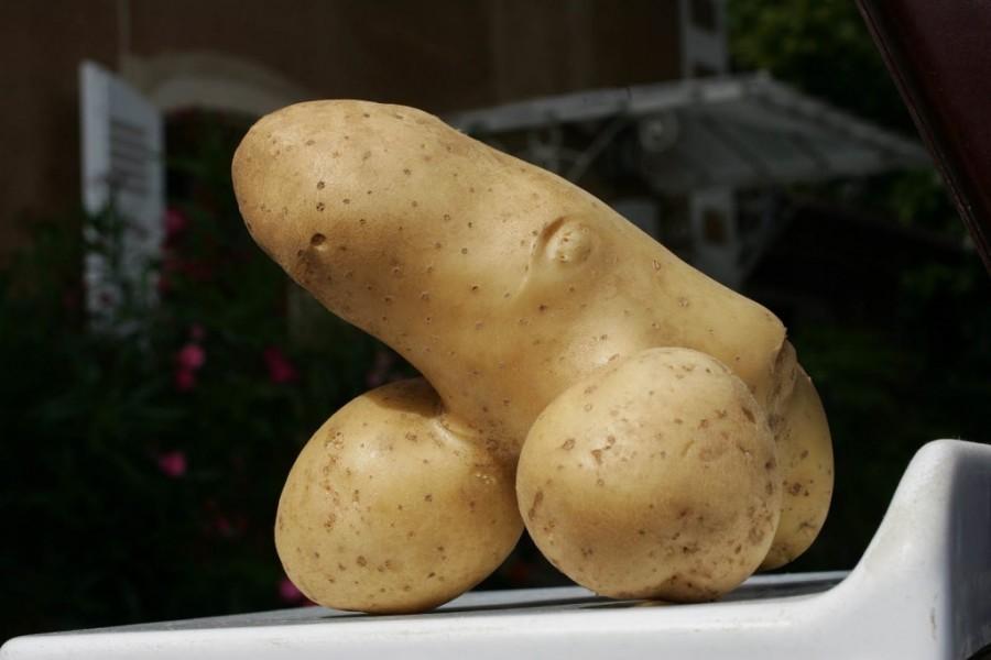 Раньше были мужики хуй картошкой