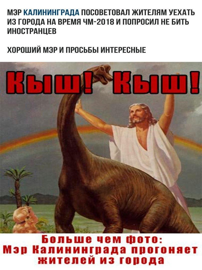 Калининград хуем по ушам