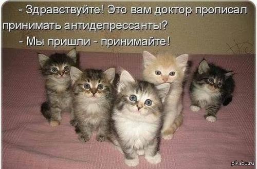 http://cs6.pikabu.ru/post_img/2014/02/17/11/1392662695_1983849777.jpg