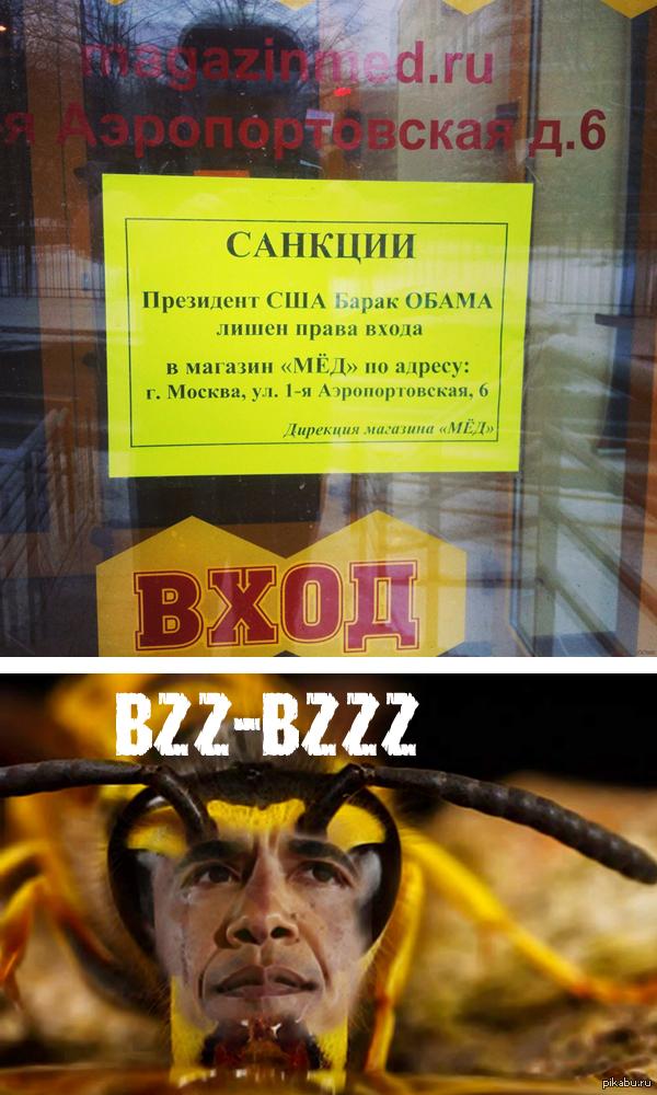 """Пчелобама. В ответ на <a href=""""http://pikabu.ru/story/vot_tak_vot_lubiteli_meda_vveli_sanktsii_protiv_ssha_2087437"""">http://pikabu.ru/story/_2087437</a>"""