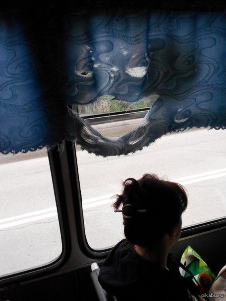 Мне кажется что шторка в автобусе что-то замышляет! ))