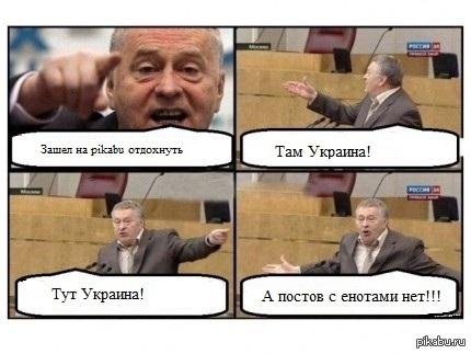 Там Украина! Тут Украина! Хочу интересные длиннопосты и енотов!