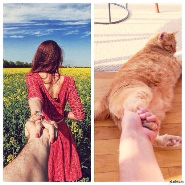 Куда ты меня тащишь с*ка двуногая :D кошачья версия :)