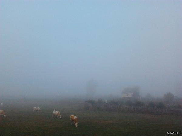 Туманное утро в Башкирии