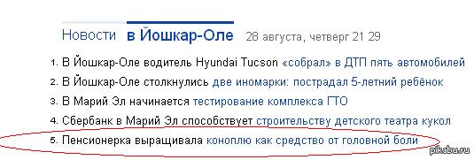 """Тем временем в Йошкар-Оле 80 кустов конопли """"для личного использования""""."""