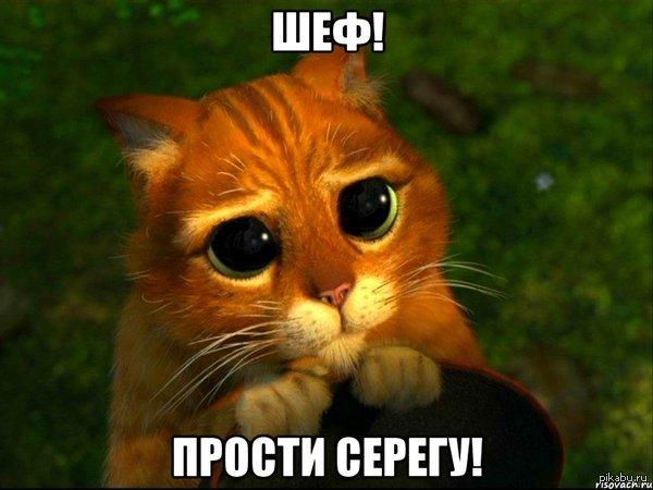 """Это может случиться с каждым! Серега смотрел пикабу на работе и попал на 1500! Шеф! Он больше не будет! 1500 пацану ведь не лишние... <a href=""""http://pikabu.ru/story/shtraf_1500r_2618295"""">http://pikabu.ru/story/_2618295</a>"""