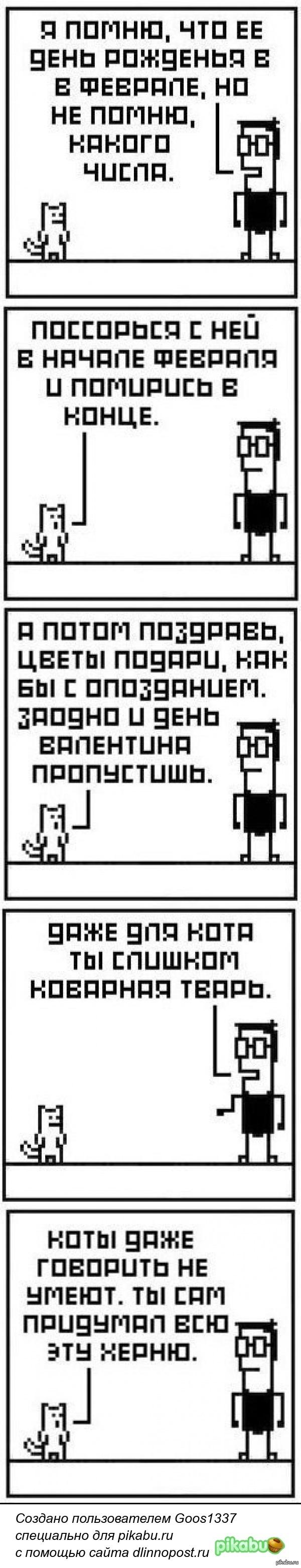 Котик в помощь