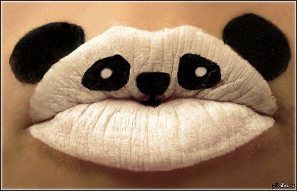 Новая знакомая прислала фото панды а в комментах фото, после которого я понял, что у нас может все получиться)))