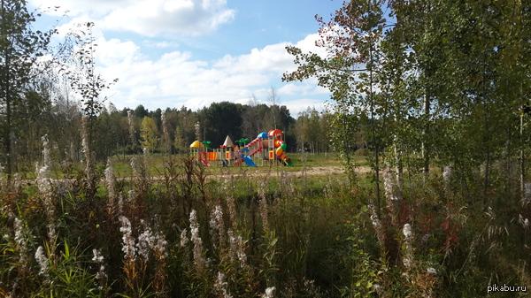 Для кого? Ехал по лесной дороге и увидел одиноко стоящую детскую площадку. для кого? для зверей? освоили бюджет.