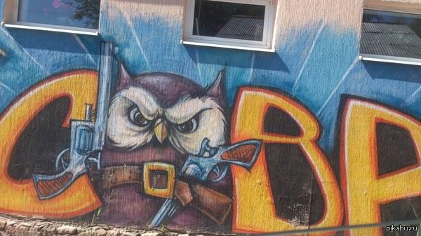 Для любителей сов и граффити в г.Мин-Воды