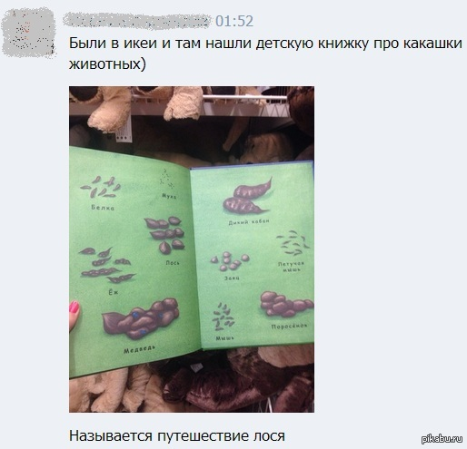 Занимательная детская книжка Подруга прислала :)