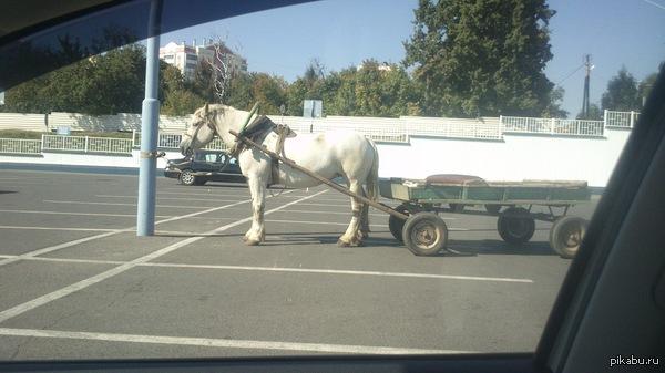 Парковка перед магазином