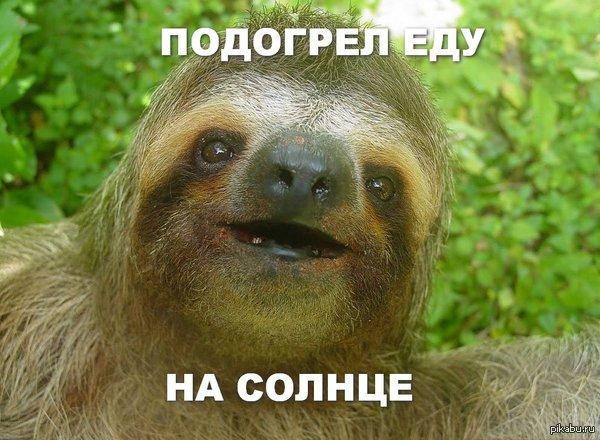 Ленивец Да кого вообще волнует, что там говорит баянометр!!?