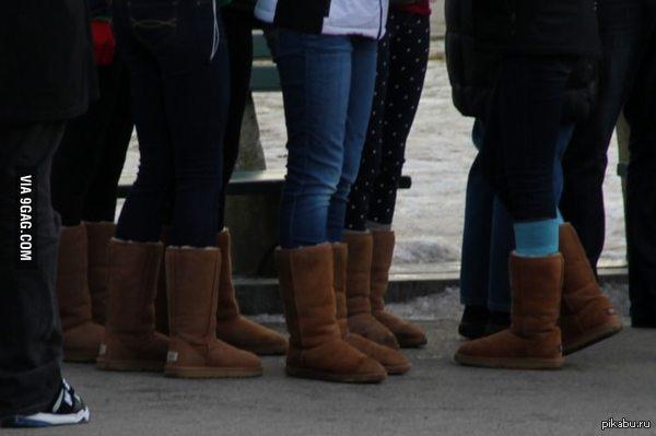Winter is coming ! Объясните мне кто-нибудь, почему их все носят ?