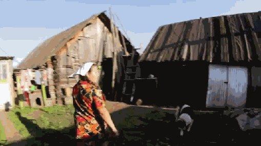 есть женщины в русских селеньях, их бабами нежно зовут, слона на скаку остановят и хобот ему оторвут