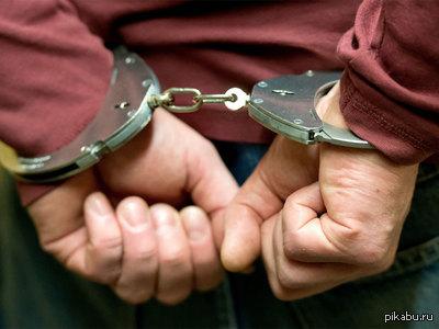Активист «СтопХама» за избиение полицейского взят под домашний арест. Ну что доигрались!