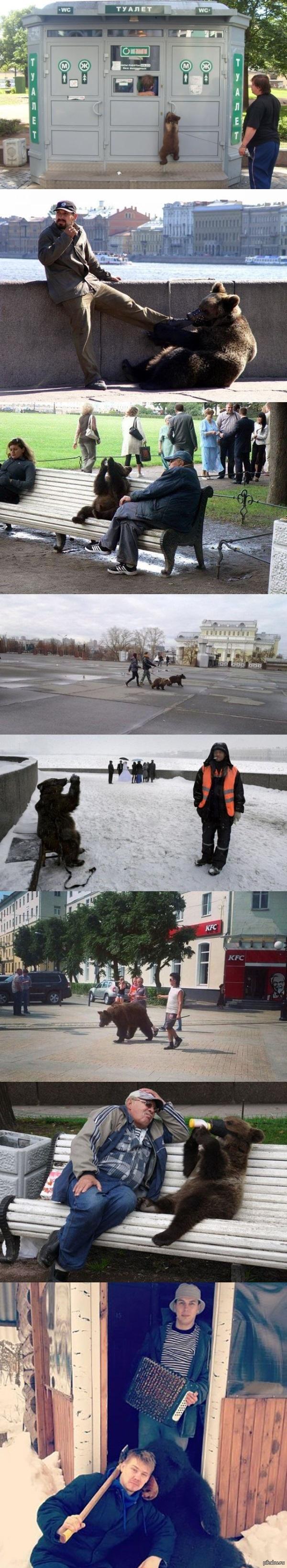 Медведи на улицах. Только прошу, не показывайте это американцам