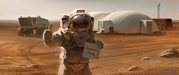 Eläinkauppa Taikalintu - Marsun hoito