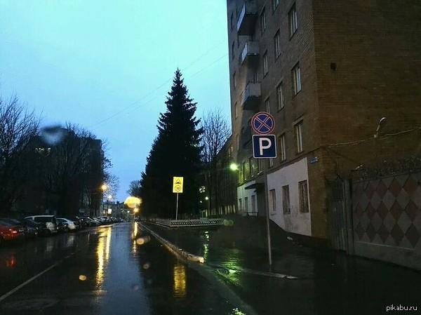 Суровый Брянск Стоянка Шрёдингера